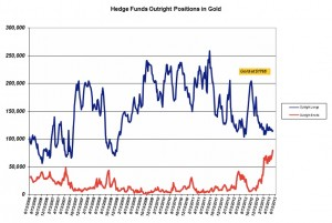 Hedge-Funds-Norcini-Positions-Or-Short